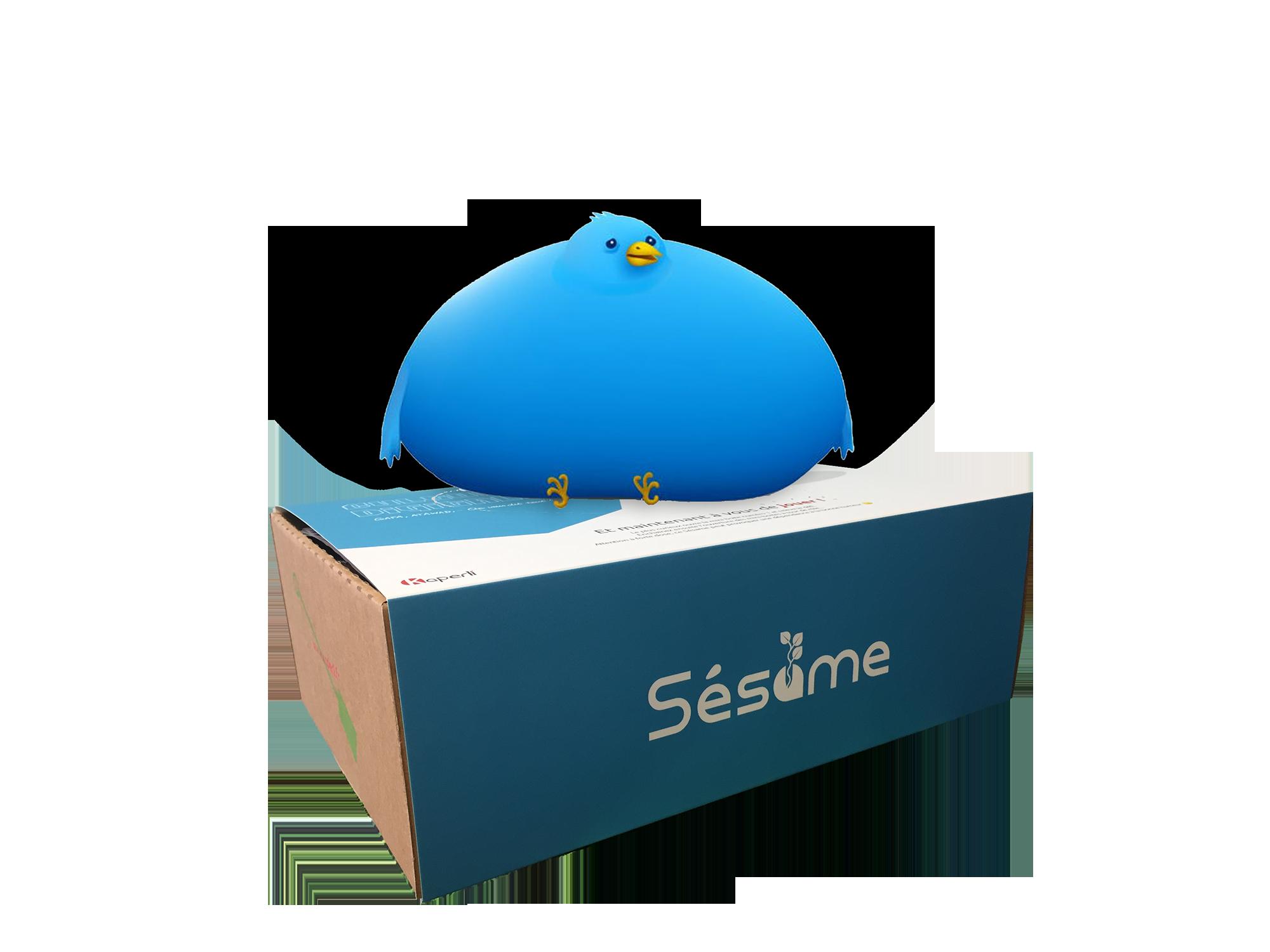 Sésame box culture digitale – Infobésité, veille et déconnexion